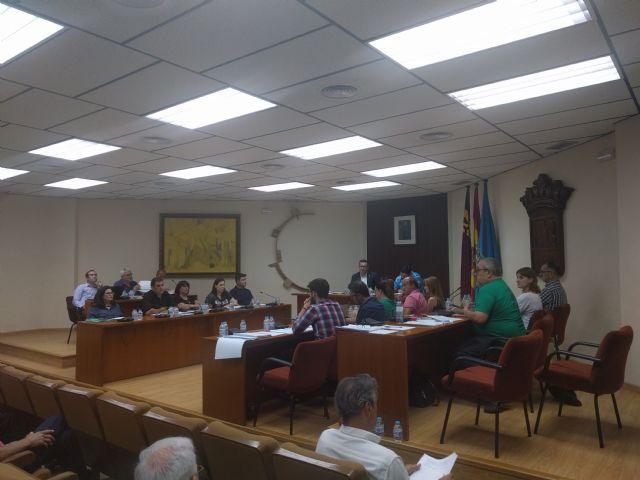Valoración del Pleno Ordinario del 30 de mayo de 2017. IU Verdes, Foto 2
