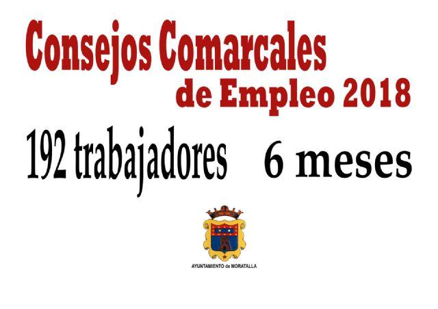 Iniciados los Consejos Comarcales de Empleo que darán trabajo a 192 personas en los próximos seis meses - 1, Foto 1