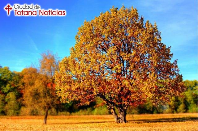 Previsión estacional ¿Cómo será el otoño 2016?