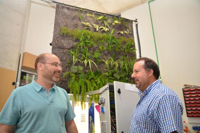 Prueban en la UPCT la eficacia de los jardines verticales en oficinas para purificar el aire - 1, Foto 1
