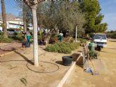 Trabajos de mantenimiento y mejora en el jard�n de El Palmeral