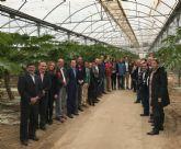 Grupo Durán muestra la tecnología y técnicas que le han convertido en el primer productor de papaya de Europa
