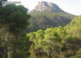 Medio Ambiente celebra el D�a Internacional de los bosques con actividades en tres parques regionales hasta el domingo 13 de marzo