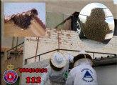 Protección Civil de Totana activa el dispositivo para recuperar enjambres perdidos en el entorno urbano