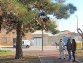 El Ayuntamiento de Puerto Lumbreras continúa con la campaña de prevención contra la 'procesionaria' en los pinos del municipio