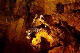 Viaje cultural al yacimiento paleontol�gico de La Cueva Victoria de Cartagena