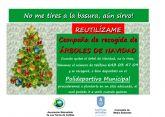 Una segunda vida para para los árboles de Navidad en Las Torres de Cotillas