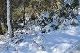 Temporal de frío y nieve