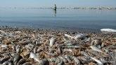 El Convenio de Barcelona de Naciones Unidas anuncia que entrará al fondo de la queja sobre el Mar Menor presentada por Ecologistas en Acción