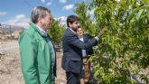 López Miras mantiene un encuentro con agricultores y empresarios agrícolas en Abarán