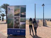 Una colección de fotografías sobre la fauna del Mar Menor acercará a los visitantes la riqueza natural que atesora el ecosistema