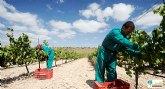 Luz�n consigue el certificado de bodega medioambientalmente sostenible