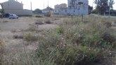 El Ayuntamiento est� ejecutando la limpieza de solares municipales en el casco urbano y la pedan�a de El Paret�n-Cantareros