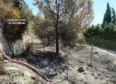 La Guardia Civil detiene al presunto autor de siete incendios