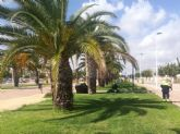 El Ayuntamiento refuerza el mantenimiento y reparación de zonas verdes con 10 jardineros