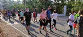 Alrededor de doscientas personas participan en la XIV Marcha Solidaria organizada por el Club Senderista Totana, cuya recaudaci�n econ�mica se ha destinado a D�Genes Lyme