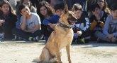 Exhibici�n canina de animales que trabajan para contribuir a la recuperaci�n psicol�gica de v�ctimas de violencia de g�nero