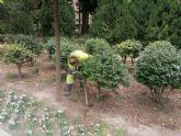 El Ayuntamiento intensifica las tareas de escarda en parterres para conseguir que el agua y nutrientes lleguen mejor a las raíces de las plantas