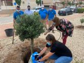 San Pedro del Pinatar y Aidemar se suman a la campaña europea 'Un Árbol Por Europa'