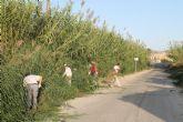 El Ayuntamiento contrata temporalmente a 27 desempleados para paliar los meses de baja laboralidad en el sector agrícola