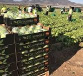 Gruventa afronta la campaña hortofrutícola de invierno con una extraordinaria proyección internacional