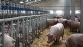 Asaja Murcia indignada con Évole por dañar gravemente la imagen del sector porcino