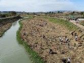 Más de 100 personas participan en la recuperación del río Segura en Ceutí, estableciendo un bosque de ribera'.