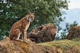 7 planes sostenibles y diferentes para disfrutar de la naturaleza este verano