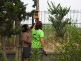 Aguas de Murcia y ANSE colaboran en la conservación de los insectos polinizadores