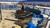 El centro 'Buceo Hispania' recoge cerca de 800 kilos de basura de los fondos marinos de la Bahía de Mazarrón