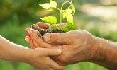 'Desarrollo sostenible como piedra angular de gestión local en una estrategia global'