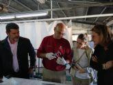 Las tortugas bobas nacidas en Calblanque reciben cuidados en el Centro de Acuicultura Marina de San Pedro del Pinatar