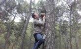 Comienza un proyecto de mejora de refugios artificiales para los murci�lagos amenazados en Sierra Espuña
