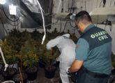 La Guardia Civil desmantela un invernadero de marihuana cuando sus propietarios repelieron con un subfusil de guerra un intento de robo