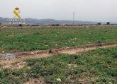 La Guardia Civil esclarece la apropiación indebida de 4 M de kilos de sandía en Lorca