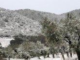 Ya hay nieve en Sierra Espuña