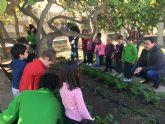 Alumnos del programa mixto de Empleo y Formación se implican con los huertos escolares
