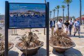 Un nuevo Sendero Azul conecta el centro de Cartagena con Cala Cortina