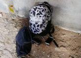 La Guardia Civil desmantela en Fuente Álamo un grupo juvenil dedicado a la comisión de robos en viviendas