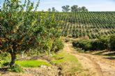 9 de septiembre, Día Mundial de la Agricultura: España, pionera en agricultura sostenible y comprometida