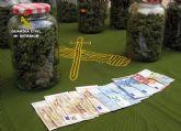 La Guardia Civil detiene a una persona dedicada a producir y distribuir marihuana a gran escala