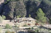 Destinan otro medio mill�n de euros para ayudas a los yacimientos de la Regi�n