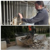 Saorín: 'Ya está en marcha la reconstrucción de las instalaciones de recogida de animales abandonados'