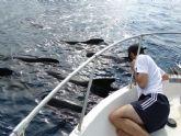Bautismos de buceo y avistamientos de cetáceos con la concejalía de Juventud de Mazarrón
