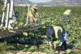 El 75% de los murcianos considera fundamental la actividad agraria