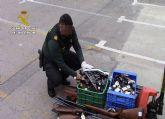 La Guardia Civil destruyó más de 3.000 armas durante el año 2019 procedentes de la Región de Murcia