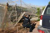 Agentes de la Polic�a Local detienen a dos personas por un presunto delito de allanamiento de morada y tentativa de robo con fuerza