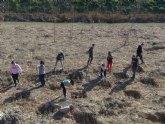Los alumnos del instituto realizaron una plantación de arboles a orillas del Segura