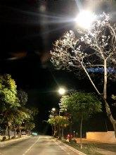 El ayuntamiento mejora el alumbrado en la plaza del romeral y las calles cano y juan alfonso oliva