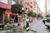 El nuevo contrato de jardinería ampliará el número de actuaciones de este servicio municipal